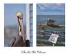 Charlie The Pelican ❤ (Zara Calista) Tags: wild pelican brown california pier nikon nikkor oceanside charlie san diego