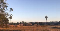 Myanmar, Bago Region, Pyay District, Paukkhaung Township, Nyaung Wun Village Tract (Die Welt, wie ich sie vorfand) Tags: myanmar burma bicycle cycling sepeda bagoregion bago westbago pyaydistrict pyay paukkhaungtownship paukkhaung nyaungwun bagoyoma
