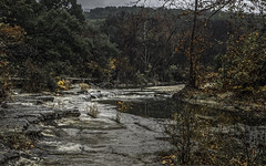 Just Remnants (keith_shuley) Tags: winter orange stream creek bullcreek austin texas texashillcountry