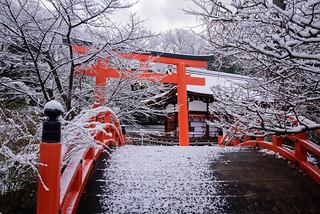 下鴨神社3・Shimogamo Shrine