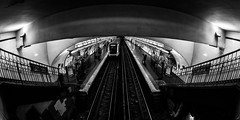 MC Peleng 8 mm f/ 3.5 A ( МС Пеленг 3,5/8А ) - DSCF6471 (::nicolas ferrand simonnot::) Tags: mc peleng 8 mm f 35 a paris | 2017 fisheye darkness underground noise night light street streetphotography bw black white monochrome vintage manual prime fixed length classic lens ruelle personnes route bâtiment metro subway gate station lignes train plafond russian architecture fenêtre