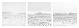 Black Hills Triptych