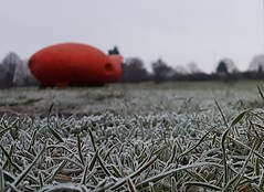 From Another World? (ManOfYorkshire) Tags: field frost frsoty ice icey grass spaceship starship landed landing doncaster uk southyorkshire metal objext shape orange scorched ufo