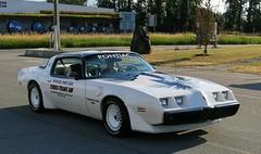 1980 Pontiac Turbo-Trans Am Indy Pace Car Edition (Custom_Cab) Tags: 1980 pontiac trans am firebird turbo indy indianapolis pace car edition official turbotransam turbotrans ttop transam 500