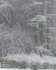 Impression (David Ball Landscape Photography) Tags: snow winter snowscape snowy peakdistrict landscape landscapes photography outdoors travel weather canon storm nature scene trees davidballlandscapephotography wwwdavidballphotographycouk 2018