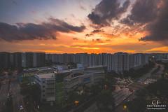 Endeavour (swordy84) Tags: landscape cityscape singapore sengkang sunset evening burn glow dusk canon 6dmarkii 6dmk2 tokina1735mm sky skyline beautifuldestinations exploresingapore wonderfulplaces heatercentral moodygrams