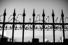 No Entry 162.365 (ewitsoe) Tags: wire barbedwire gate fence fencefriday hff warsaw poland polska noentry forbidden ewitsoe canon eos6dii street urban city fenced state europe cityscape monochrome bnw blackandwhite