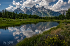 Schwabacher Landing (Tony Phillips Photography) Tags: grandtetonnationalpark schwabacherlanding snakeriver wyoming clouds landscape landscapephotography mountainrange mountains nature naturephotography outdoorphotography outdoors reflection river scenery scenicview travel water wildflowers
