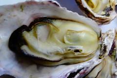 DSC00041 (muzina_shanghai) Tags: 牡蠣 蒸し牡蠣 oyster