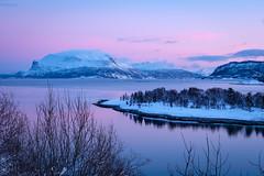 Pink january light over Rolløya. (Reidar Trekkvold) Tags: norway harstad rolløya grovfjord troms fjord winter norge vineter sjø see fujifilm xt20 xf1855