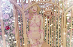With your love you've caged me (Gabriella Marshdevil ~ Trying to catch up!) Tags: sl secondlife cute kawaii sexy violentseduction doll asian taketomi enfersombre mudskin mishmish mossmink halfdeer catwa