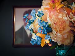 memorial (362/365) (severalsnakes) Tags: 12453563 kansas kansascity kodak mft pixpro saraspaedy artificial bouquet flower flowerarrangement m43 microfourthirds s1 silk