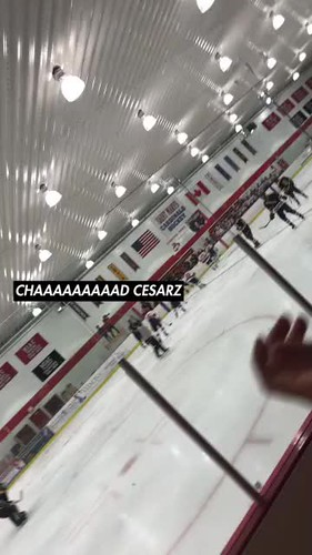 Video - MHockey goal