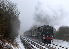 Mainline farewell to Ollie (Andrew Edkins) Tags: britanniaclass 70013 olivercromwell brit brstandard railwayphotography travel theyorkshireman farewell goodbye snow fog mist trees geotagged canon mainlinesteam midlandmainline nottinghamshire gunthorpe steamtrain railtour trip footcrossing winter 2018 march uksteam morning light pacific smoke exhaust passengerservice 1z57 stormemma beastfromtheeast sigma england uk westcoastrailways charter mantonbank track