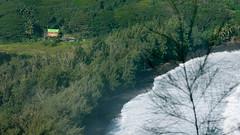 Waipio (16) (BoyUtot) Tags: waipiovalley waipiofalls waimea surfing hiking trekking dronephotography mavic panasonicgh1 hawaii bigisland lumix 100300mm travel nature landscape seascape honokaa ramesesmendoza