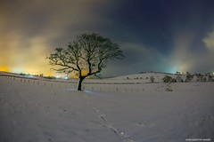 Tryst (john&mairi) Tags: tree snow antonine wall sky clouds light pollution boclair wester millichen farm glasgow bearsden scotland unesco world heritage site historic