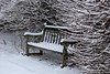 samsebeskazal-2170.jpg (samsebeskazal) Tags: winter newjersey ringwood