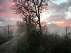Colourful foggy sunrise 3 (VillaRhapsody) Tags: sunrise red pink morning dawn landscape rural village kayaköy fethiye tree foggy misty