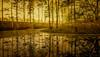 The Gold of Heaven (JDS Fine Art Photography) Tags: sunrise river water lake nature gold golden naturesbeauty naturalbeauty inspirational spiritual