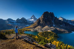 Mount Assiniboine in the morning during larch season from Nub pe (tvrdypavel) Tags: adventure alpine assiniboine autumn beautiful british canada climb columbia discover environment exploration explore extreme fall famous glacier glow great green high hike hiking hut ice impressive lake lakes landscape larches magnificent magog meadow mount mountain national natural nature nub og outdoor park peace peaceful peak preserve recreational reflection relax remote rock rockies scenery sky summer summit tranquility travel trees trek valleys walk wilderness yellow