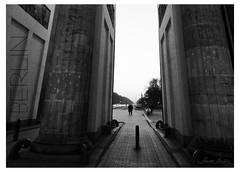 MIRADA BAJO LA PUERTA DE BRANDENBURGO (champollion-10) Tags: berlin blackandwhite blancoynegro street city cityscenes cityscape streets urban