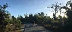 Myanmar, Bago Region, Taungoo District, Oktwin Township (Die Welt, wie ich sie vorfand) Tags: myanmar burma bagoregion bago eastbago taungoodistrict taungoo oktwintownship oktwin cycling bicycle sepeda surly crosscheck myself bagoyoma