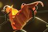 L'illuminée. / The illuminated. (aragache) Tags: feuille leaf automne autumn saison fall canon 600d sigma nature lumière light macro closup orange parc