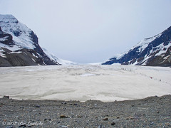 Athabasca Glacier (Per@vicbcca) Tags: sony dscp150 columbiaicefield britishcolumbia canada canadianrockies athabascaglacier banff jasper tourist tourism colour color holiday travel