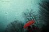 ombroso e bagnato (pamo67) Tags: pamo67 shadowyandwet pioggia rain ombrello umbrella rosso red ombre shadows figure vetro glass gocce drops bagnato silhouette alberi trees rami branches pasqualemozzillo