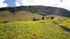 20171206_115858 (taver) Tags: chile rapanui easterisland isladepasqua summer samsunggalaxys6 dec2017 06122017 ranoraraku quary