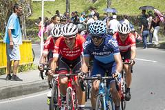 Jarlinson Pantano -Trek- (Cristy Valencia) Tags: ciclismo colombia medellín circuito cyclist cycling bikes ciclistas