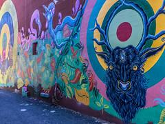 2018 - photo 044 of 365 alley grafitti in Halifax (old_hippy1948) Tags: grafitti art halifax