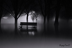 The Bench (BergeyTown) Tags: water bench blackandwhite cambridge trees nikon photooftheday flooding park backlight