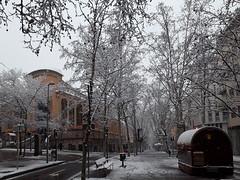 Let it snow, let it snow, let it snow... Terrassa (antarc foto) Tags: snowy weather snow terrassa catalunya rambla ègara neu nevat hivern winter