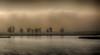 Silhouetten am See - Silhouettes at the lake (ralfkai41) Tags: bäume trees silhouetten nepperminersee nebel landschaft lakeneppermin see wasser nature silhouettes water lake landscape natur trist fog mist