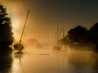 River Frome sunrise complete with 4 little ducks.
