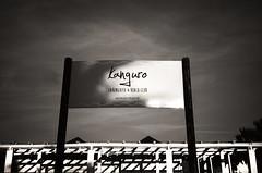 (Alfonso Lazo) Tags: olympus xa2 tmax 100400 xtol 13