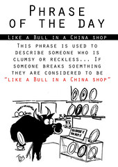 like a bull in a china shop (phrase of the day)