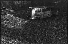 Billy's Corvair junkyard, clothesline stand, forest, deep shadows, Black Mountain, NC, FED 4, Industar 26, Ilford FP4+, Moersch Eco Film Developer, November 2017 (steve aimone) Tags: corvair junkyard van clothesline stand shadows woods forest blackmountain northcarolina fed4 industar26 ilfordfp4 moerschecofilmdeveloper rangefinder 35mm film blackandwhite monochrome monochromatic