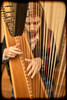 Strung Out 8/52 (rmrayner) Tags: strungout 852 harp strings portrait week8music 52weeksthe2018edition music musicalinstrument