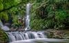 Elabana Flow (Kent Wilkins) Tags: 2018 elabanafalls kentwilkinsphotography lamingtonnp oreilly waterfall rock bush water landscape queensland australia nd400 long exposure rainforest forest