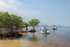 Sustainable tourism can support mangrove ecosystem conservation (blue.forests) Tags: seagrass mangroves indonesia lembongan blue forests aerial roots mangrove habitat ecosystem coastal fieldwork boat mud crabs beach