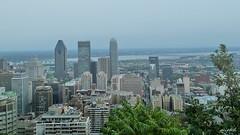 (plitch) Tags: plitchphotostream plitch architecture montreal cityscape quebec