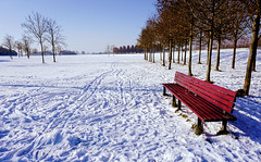 That RED Bench (Amol Gawai) Tags: ifttt 500px red winter bench white snow seasons no person