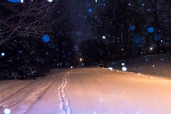 I got first (RubyT (I come here for cameradarie)) Tags: pentaxkp da2040ltd snow snowfall dark night footprints street winter cold pentax pentaxart