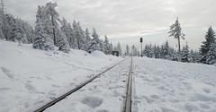 Schienen im Schnee (Teelicht) Tags: eisenbahn harz schienen schnee winter snow train deutschland germany railwaytracks