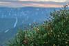Morning mood (Alexandrii) Tags: sunset sunrise evening morning flowers moss macro closeup hills mountains north plato landsсape lowland clouds khibiny