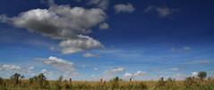 Artigas, Uruguay (Eduardo Amorim) Tags: campo field champ cielo céu sky nubes nuvens clouds nuages artigasuruguayuruguaipampacampanhafronteirasudaméricasüdamerikasuraméricaamérica do sulsouth americaamérique du sudamerica meridionaleamérica del suramerica sudeduardo amorimpampa uruguayacampañacampaña uruguaya