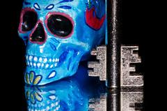 The Dead Key (SLX_Image) Tags: 7dwf macromondays skull myfavouritenovelfiction