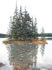 Banff National Park Autumn (Mr. Happy Face - Peace :)) Tags: lake banff nature scenery tree htmt albertabound 7dwf art2018